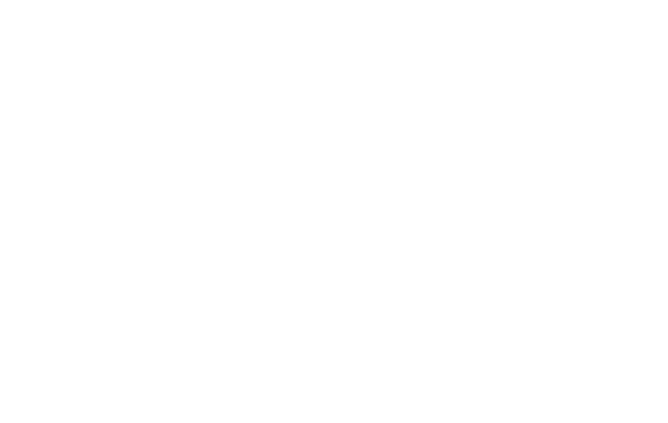 Discover The Wonder Together